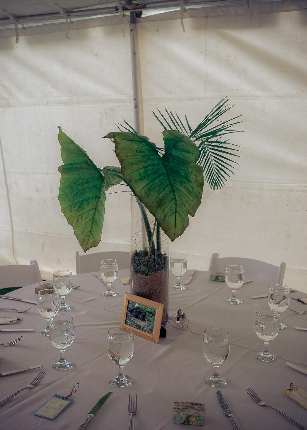 Bath Wedding Photographer - www.thefxworks.co.uk16.JPG