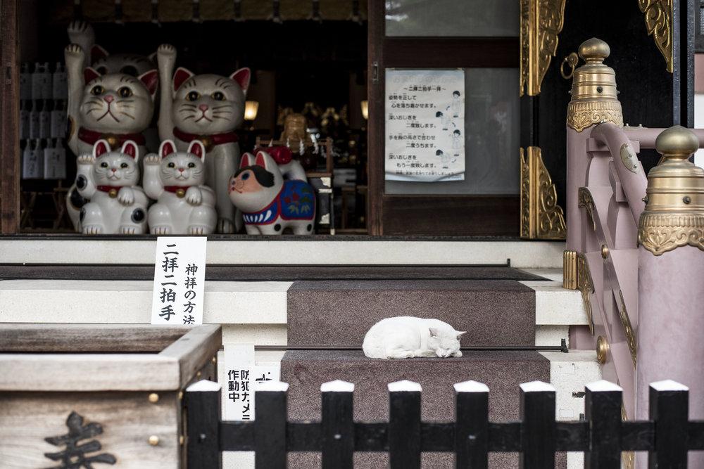 Imago Shrine, Akasaka, Tokyo