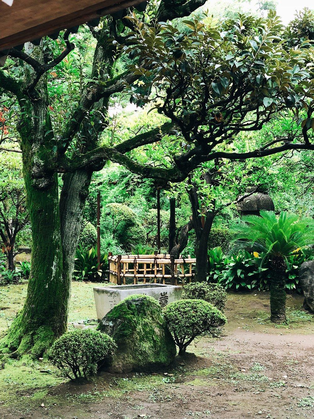A Park in Asakusa, Tokyo