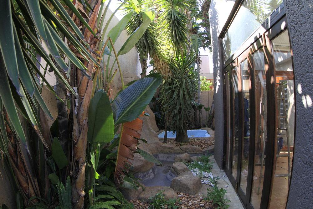 Before - garden