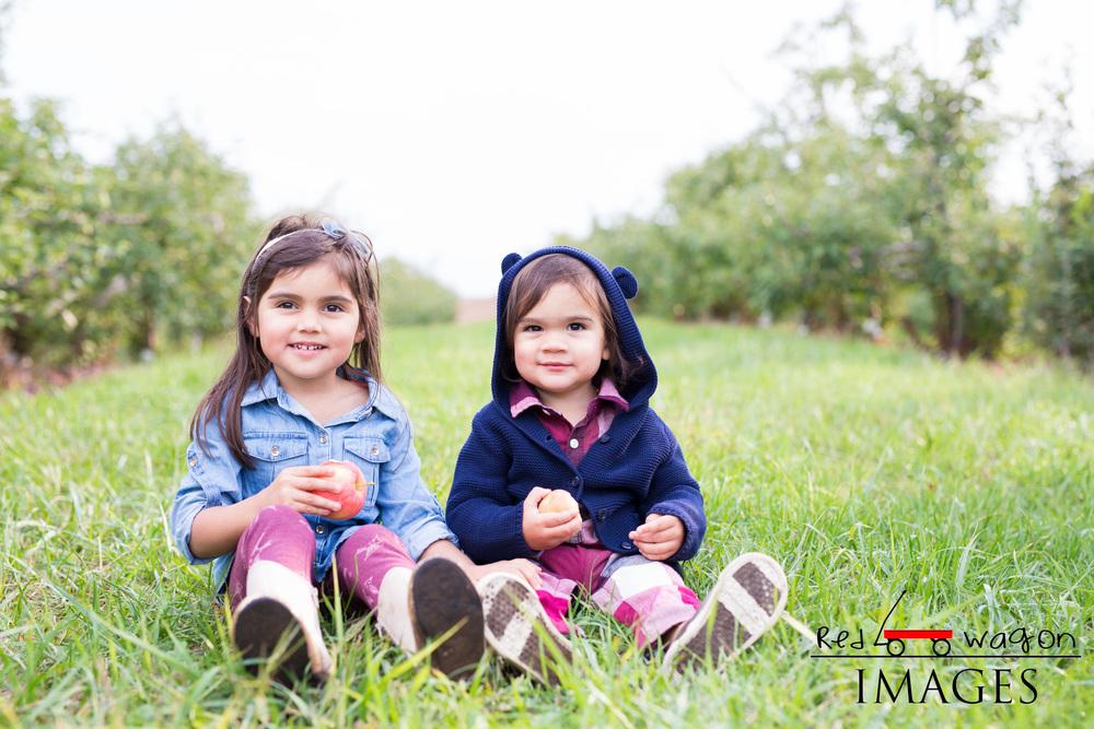 family-photography-lyman-orchard