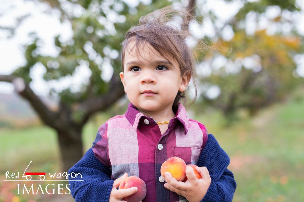 family-photography-lyman-orchard-6