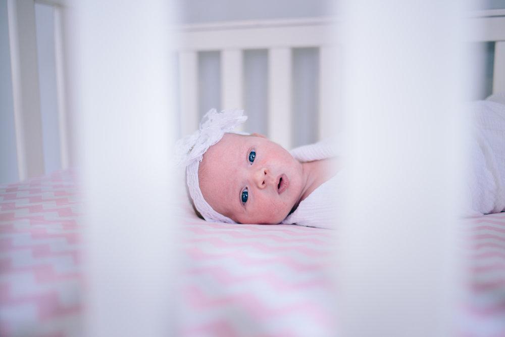 BabyS-2469.jpg