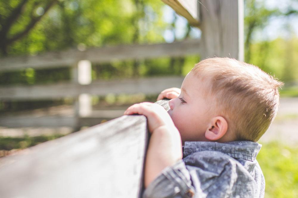 endicott park toddler session