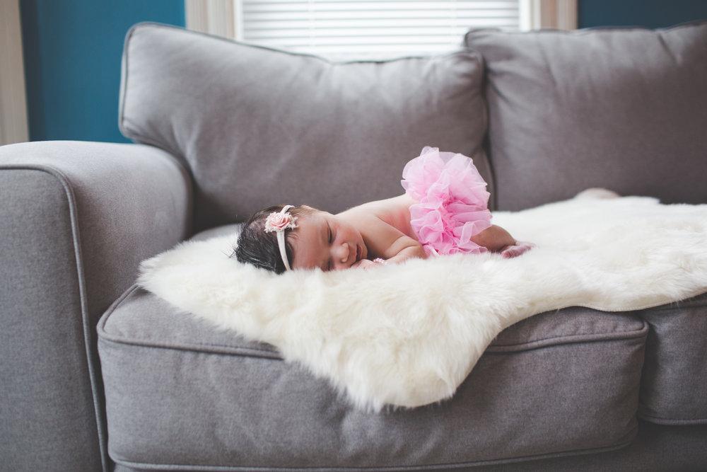 Boston in home newborn session