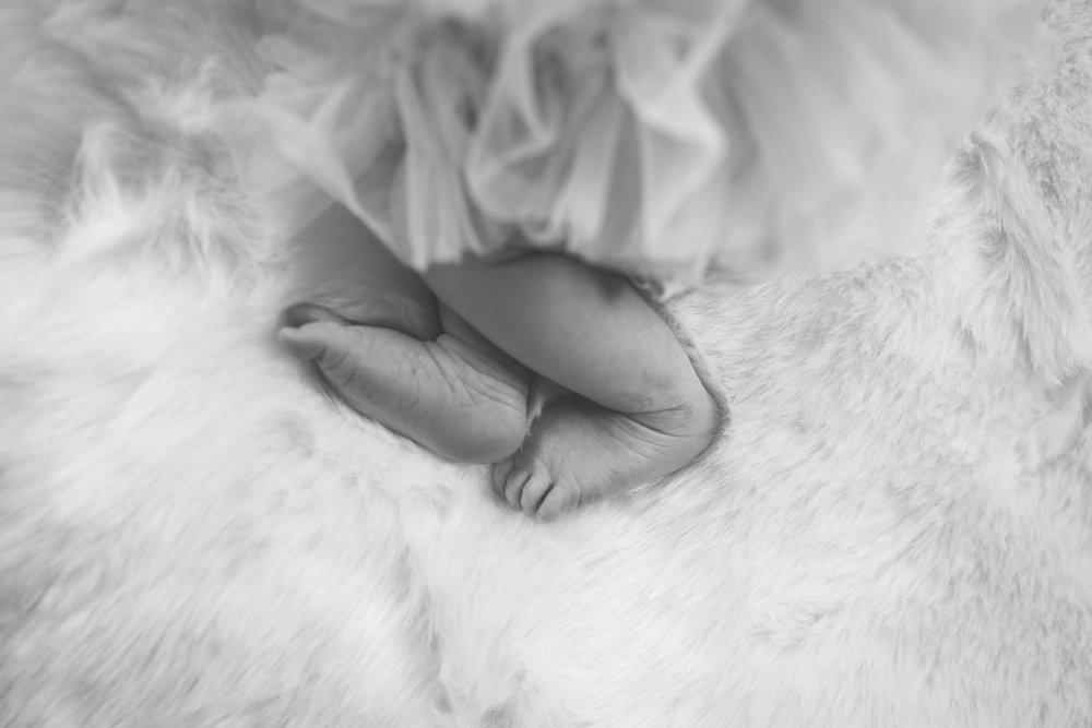 newborn in home photography boston