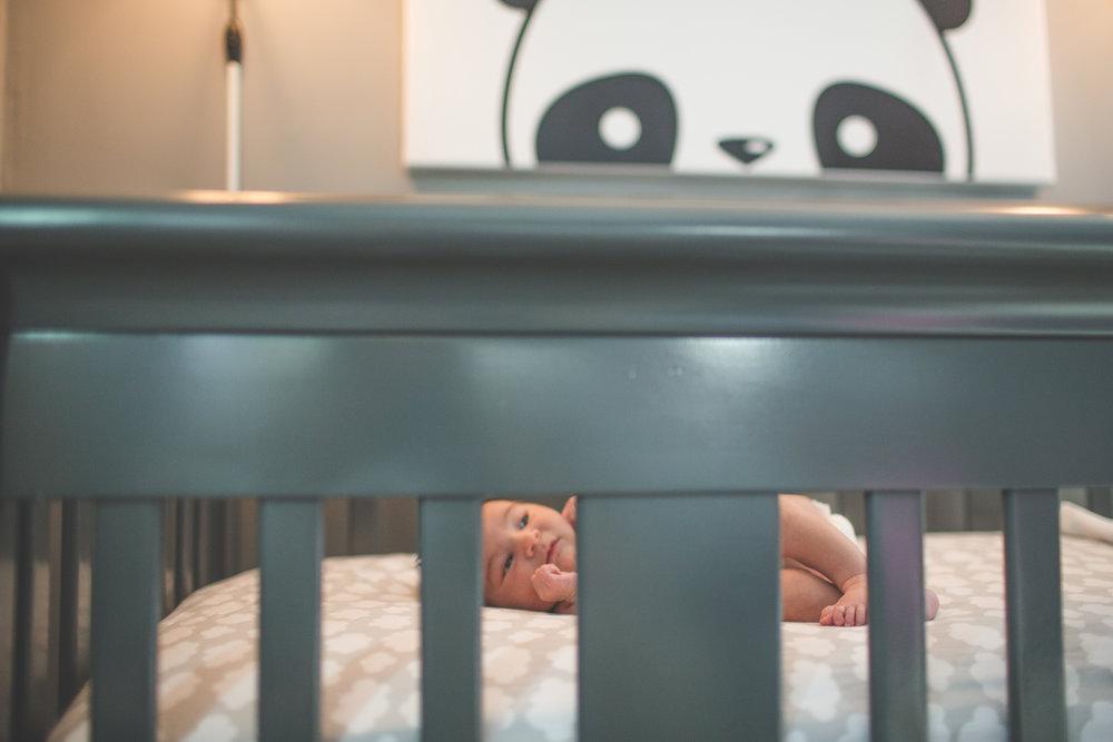 Boston newborn lifestyle photographer