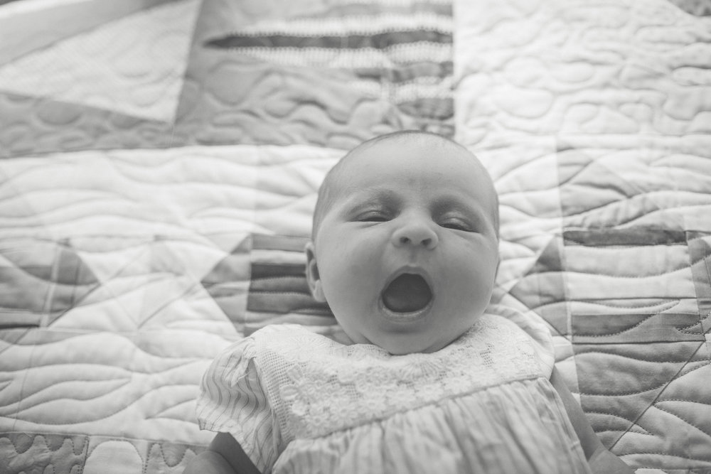 natick newborn photography