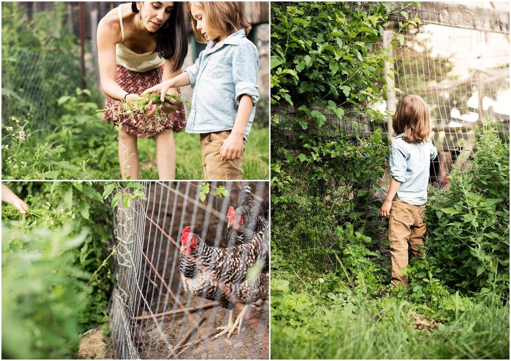 boston farm family photography