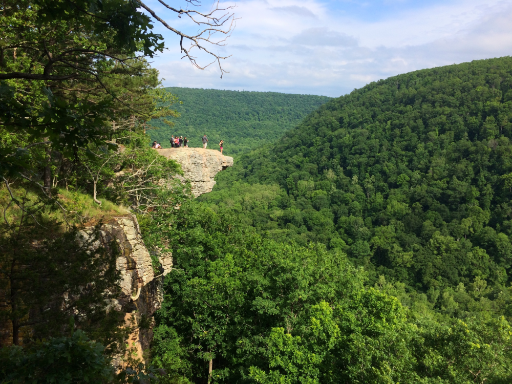 Whitaker Point Trail (Hawksbill Crag), Arkansas