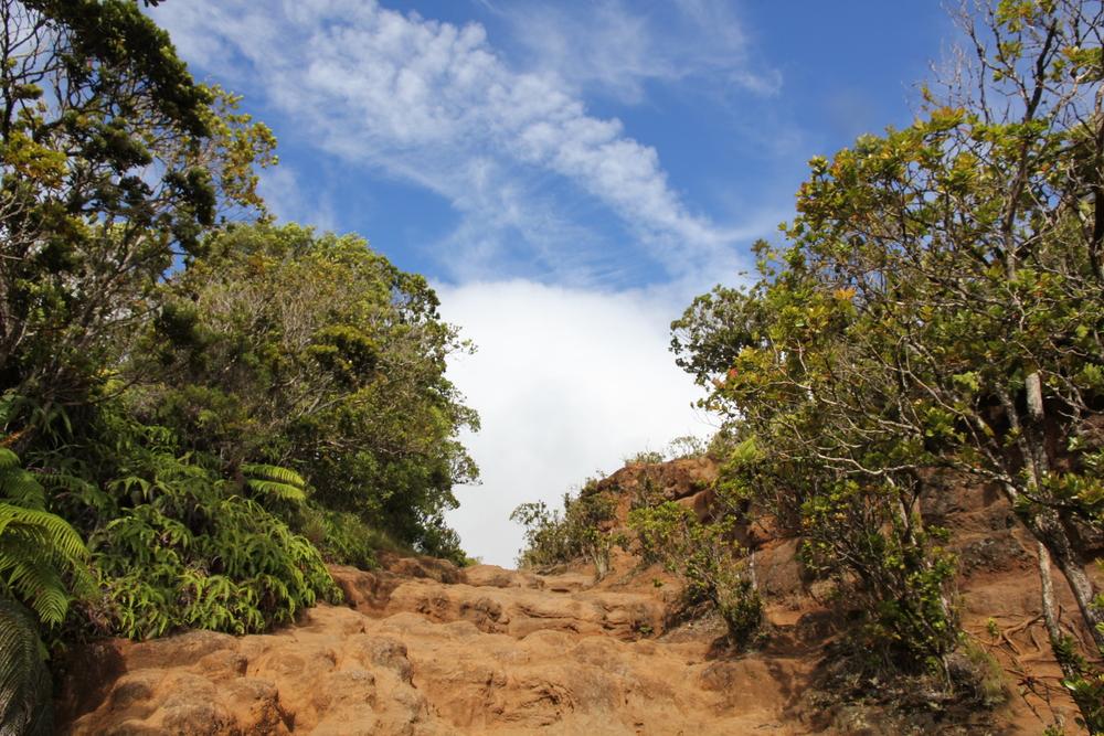 Hiking Waimea Canyon, Kaua'i