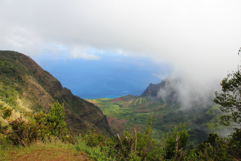 Watching the clouds roll in, Waimea Canyon, Kaua'i