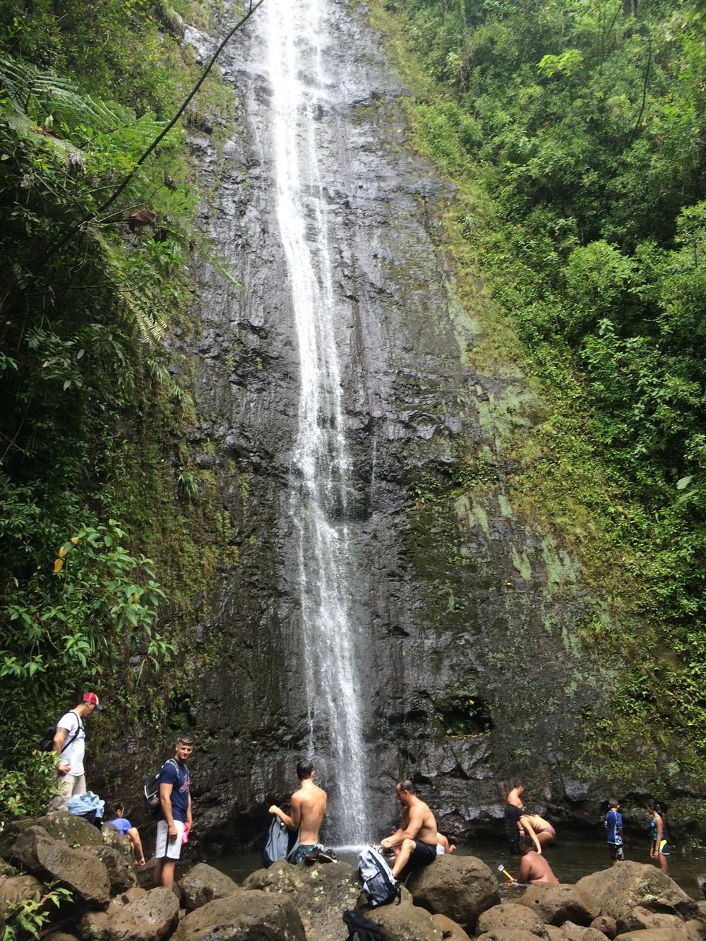 Manoa Falls, O'ahu