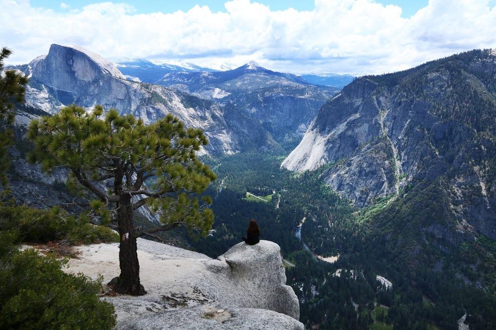 Yosemite Point
