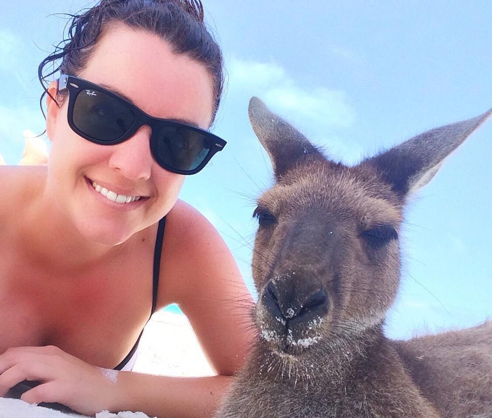 Kangaroo Selfie Time