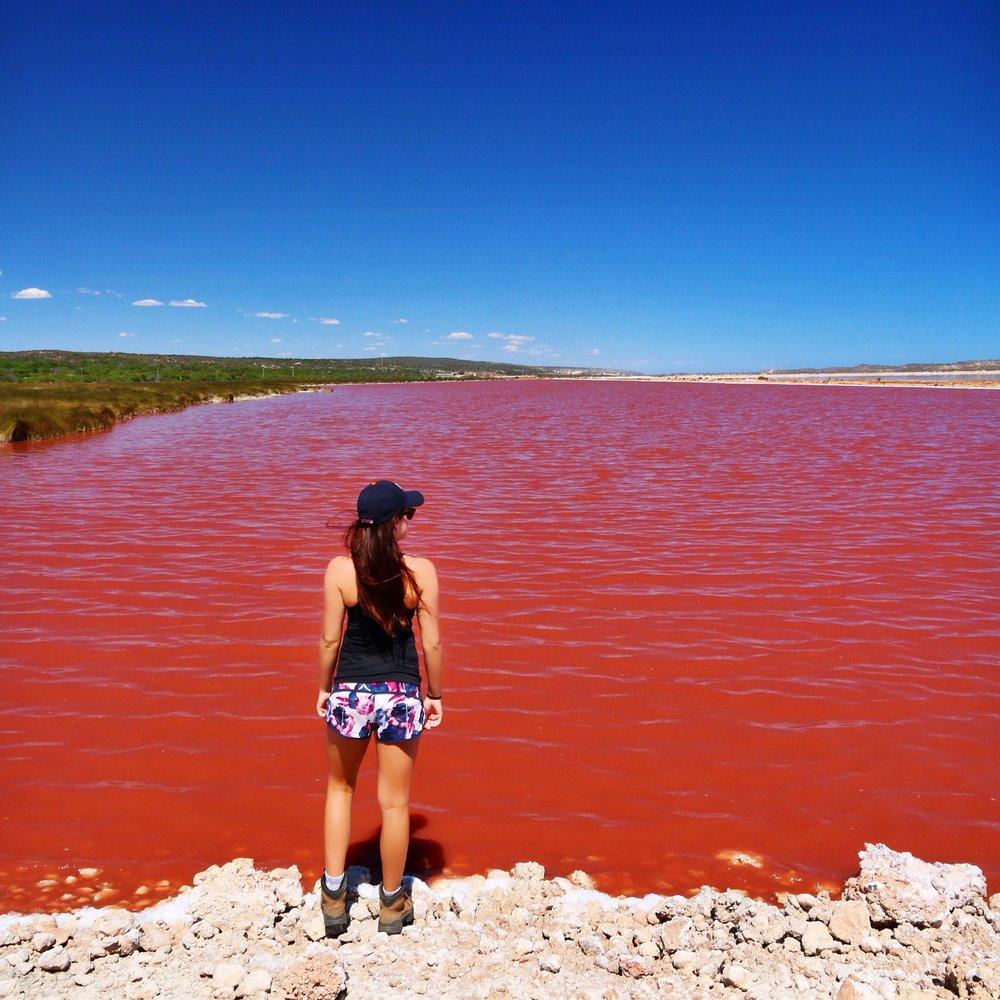Pink Lake, Hutt Lagoon - Western Australia