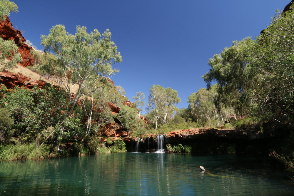 Fern Pool, Karajini - Western Australia
