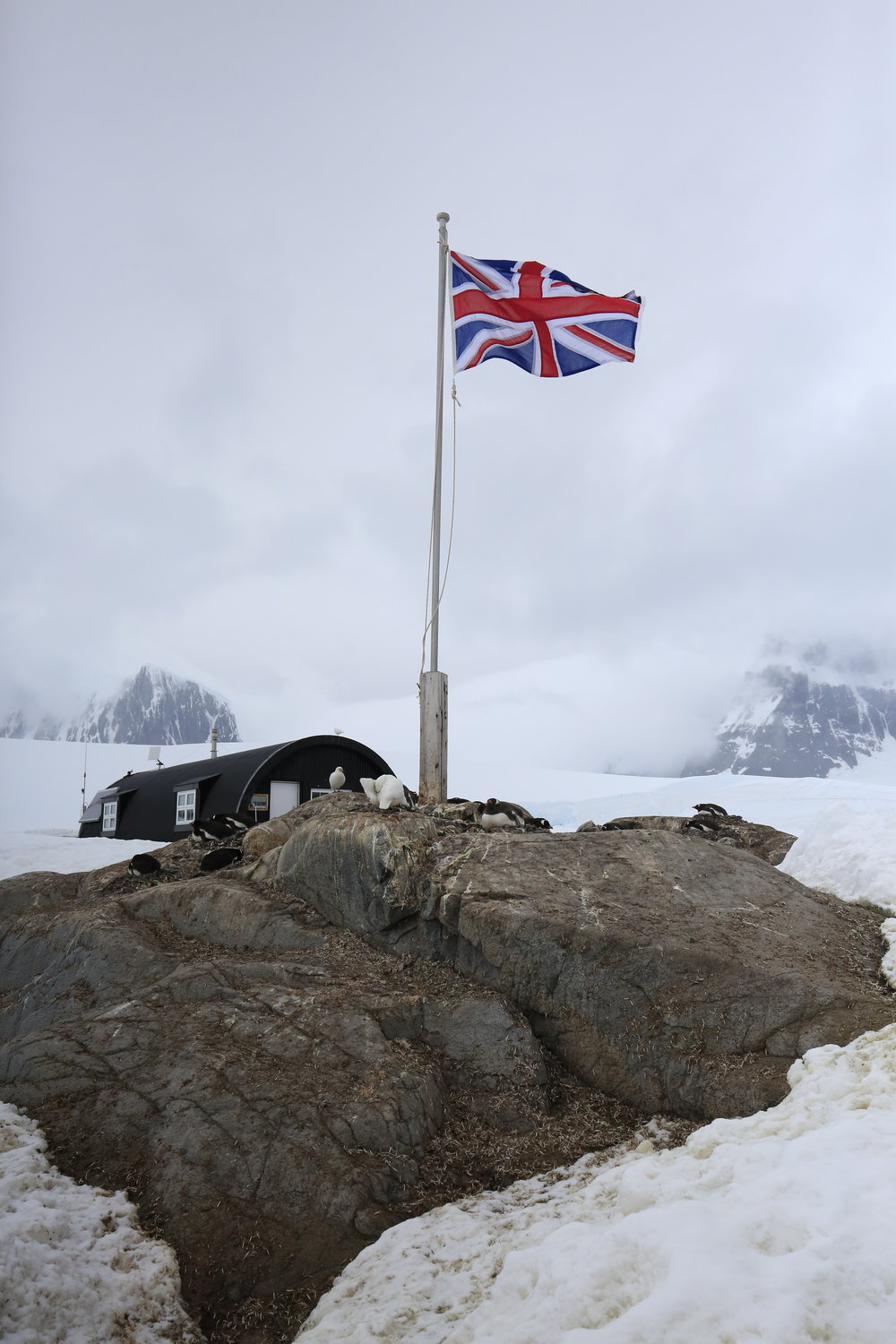 Penguin Post Office - Antarctica