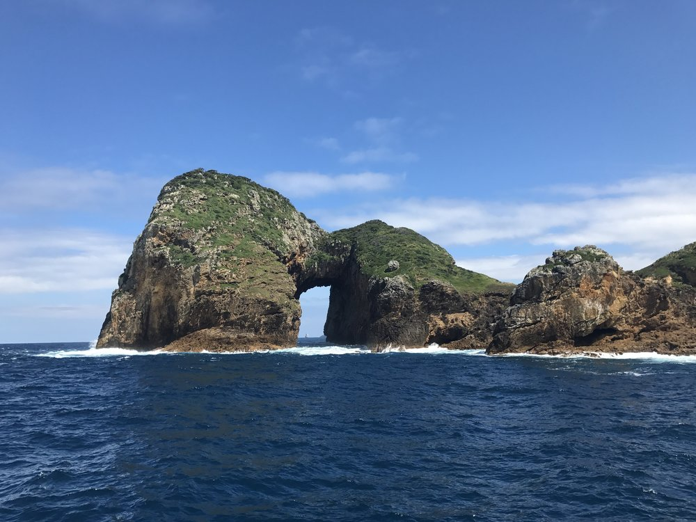 Sea Arch - Poor Knights Islands, New Zealand