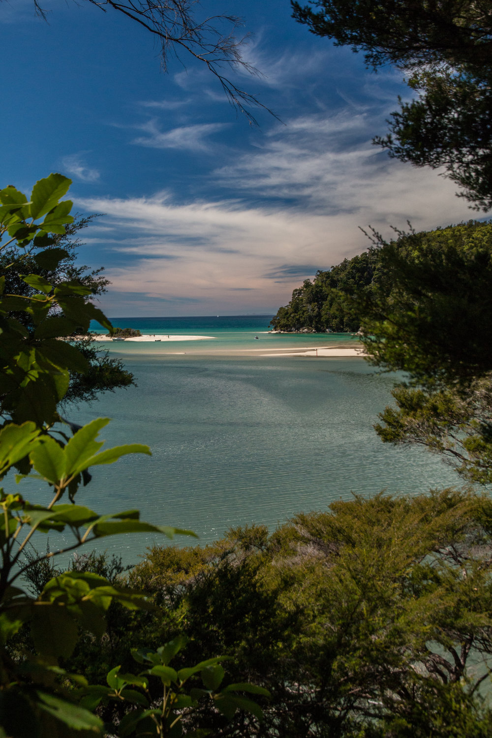 The beautiful beaches of Abel Tasman National Park