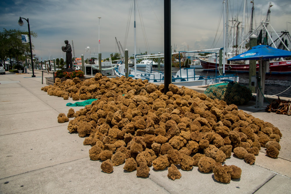 Sponges on the historic dock at Tarpon Springs