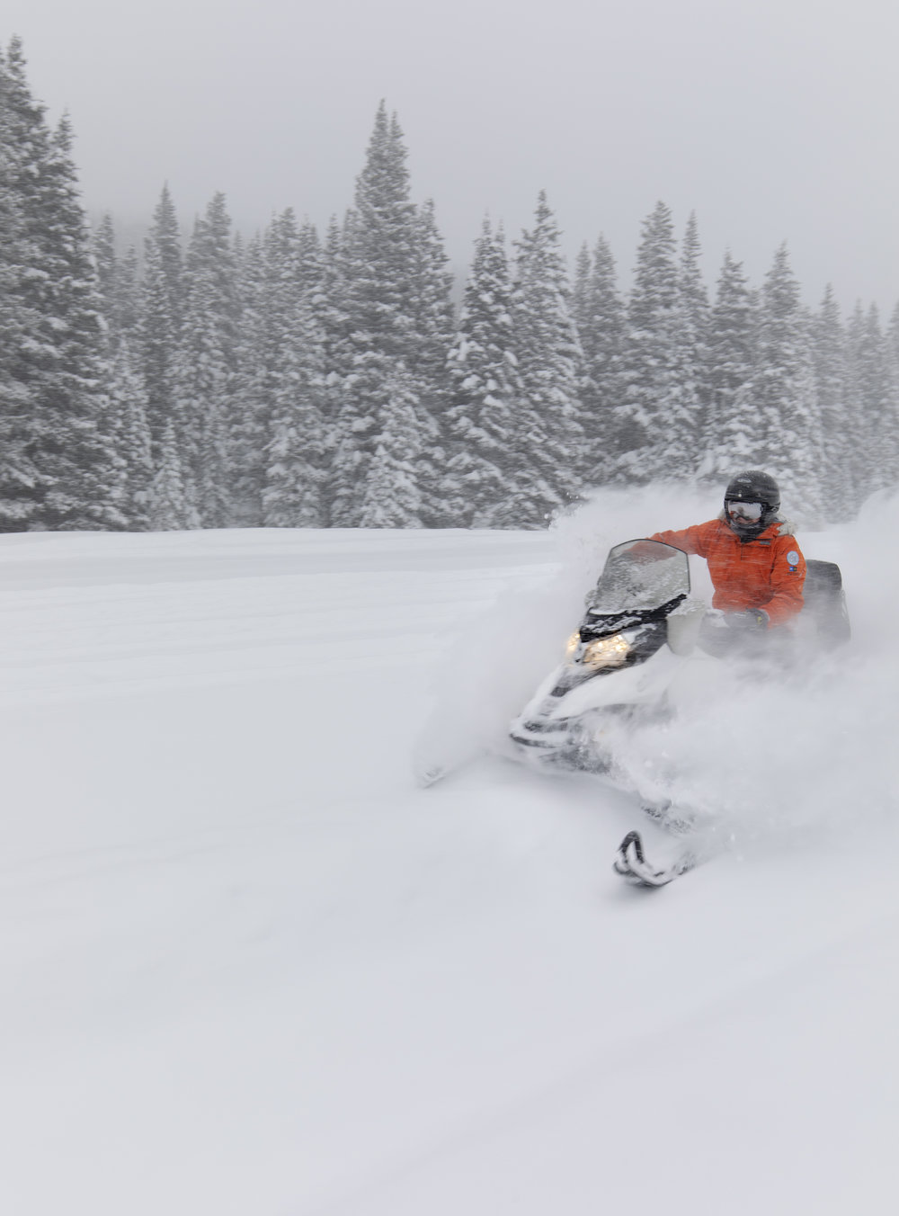 Fresh Powder - Grand Adventures - Winter Park Resort, Colorado