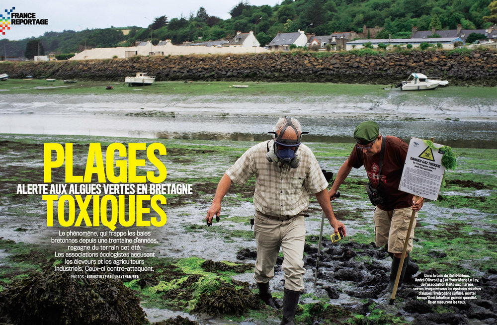 """Plages toxiques "" dans VSD. Aout 2017 / ""Toxic beaches"" in VSD. August 2017"
