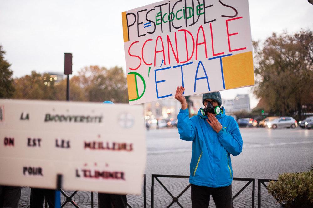18-20171115-Marche-Pesticides-Paris©Augustin-Le_Gall-HAYTHAM-PICTURES-IMG_3965.jpg