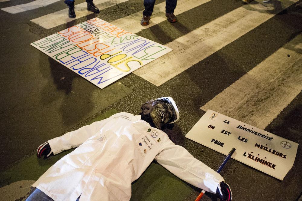 31-20171115-Marche-Pesticides-Paris©Augustin-Le_Gall-HAYTHAM-PICTURES-DSCF3645.jpg