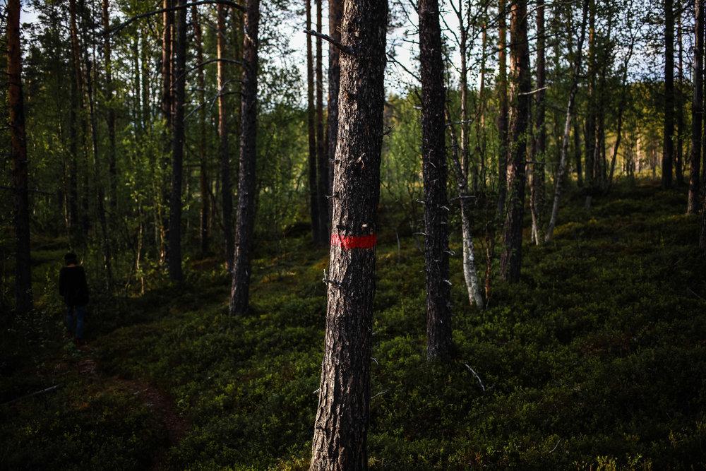 2015-LOFOTEN-LFSTYLE©AUGUSTIN-LE_GALL-HAYTHAM-PICTURES-IMG_4236.jpg