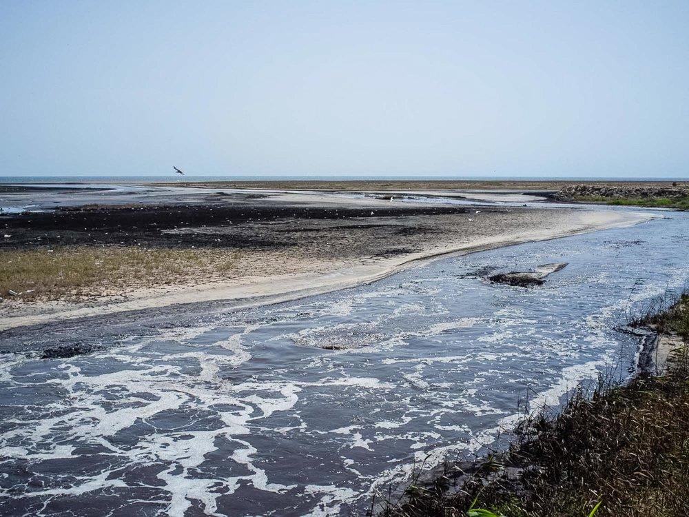 Plage de Chott Essalem. Gabès. 2016. Les déchets toxiques et polluant rejetés par l'usine du Groupe Chimique Tunisien (GCT) ont tué l'ensemble de la faune marine depuis les années 1990. Le golfe de Gabes était une zone de reproduction importante. L'usine rejette 13000 tonnes de phosphopgypes par jours, issu de la transformation chimique du phosphate en engrais, dans la mer. Les pêcheurs se plaignent de la pollution due aux rejets de produits toxiques dans l'air, dans les sols et dans la mer.
