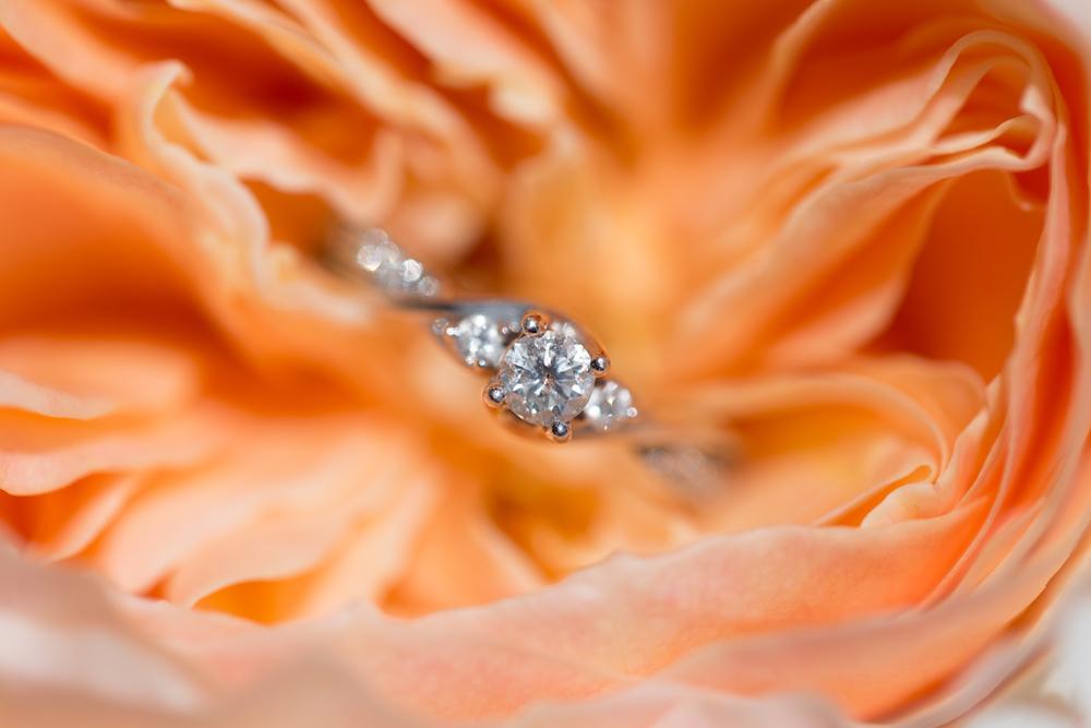 Sacramento-Wedding-48.jpg