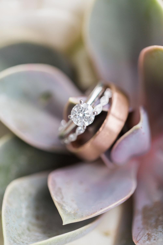 wedding-rings-succulent.jpg