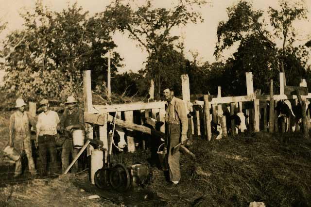 1. Henry Elsen Milking Cows