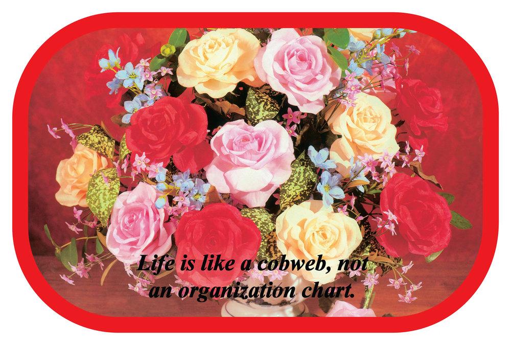 Life is Like a Cobweb