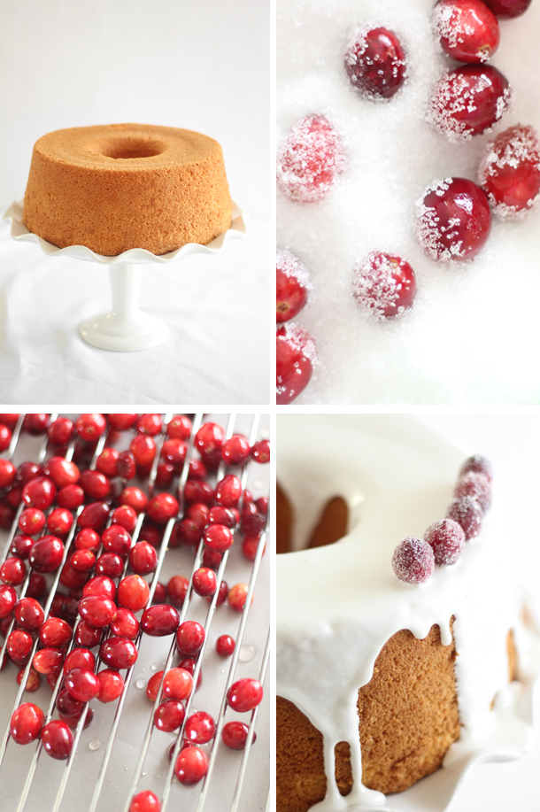 orange chiffon with glittering cranberries 4.jpg