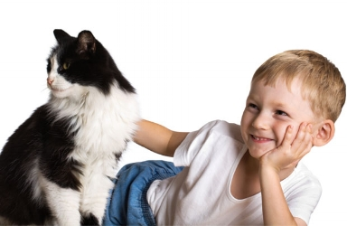 cat_child_boy.jpg