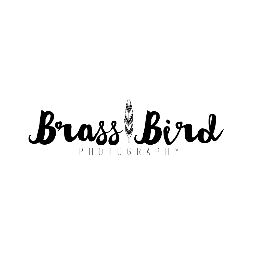 Brass Bird Photography