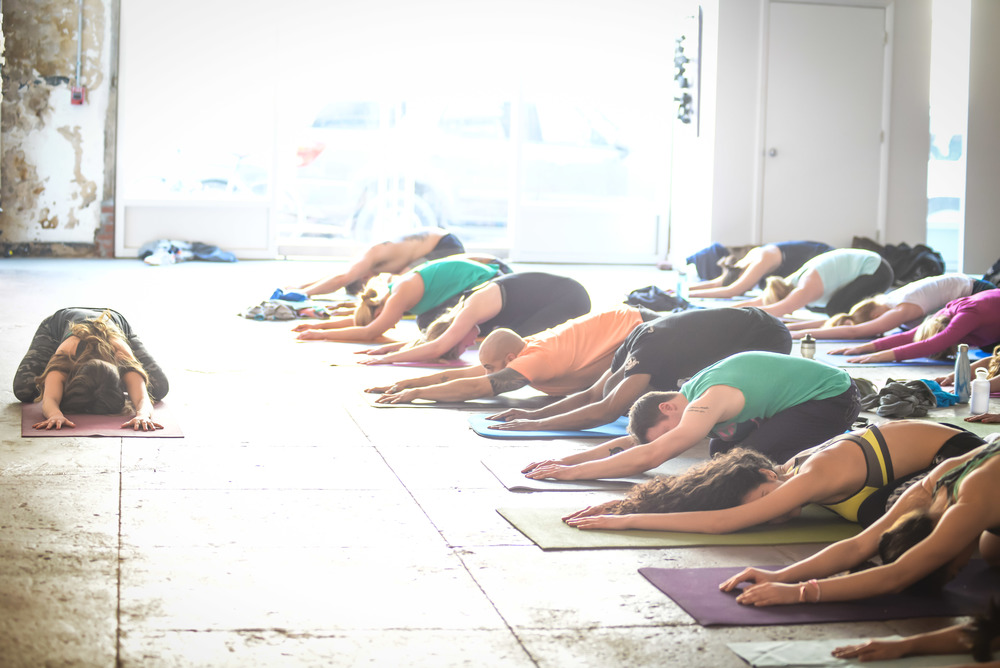 Grip The Mat Yoga, Bendy Brunch, Longview Gallery, Sunday February 15, 2015, Photo by Ben Droz.