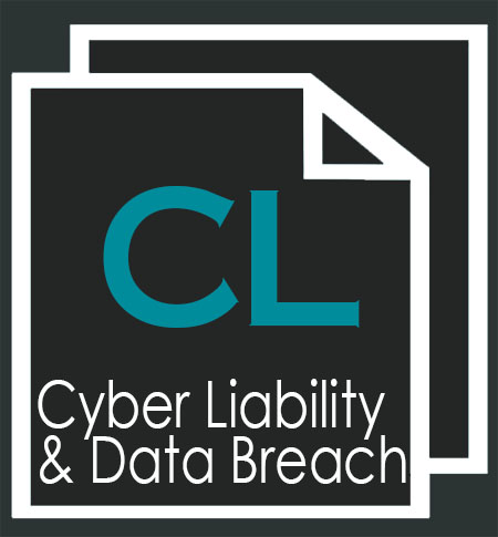 Cyber Liability & Data Breach.jpg