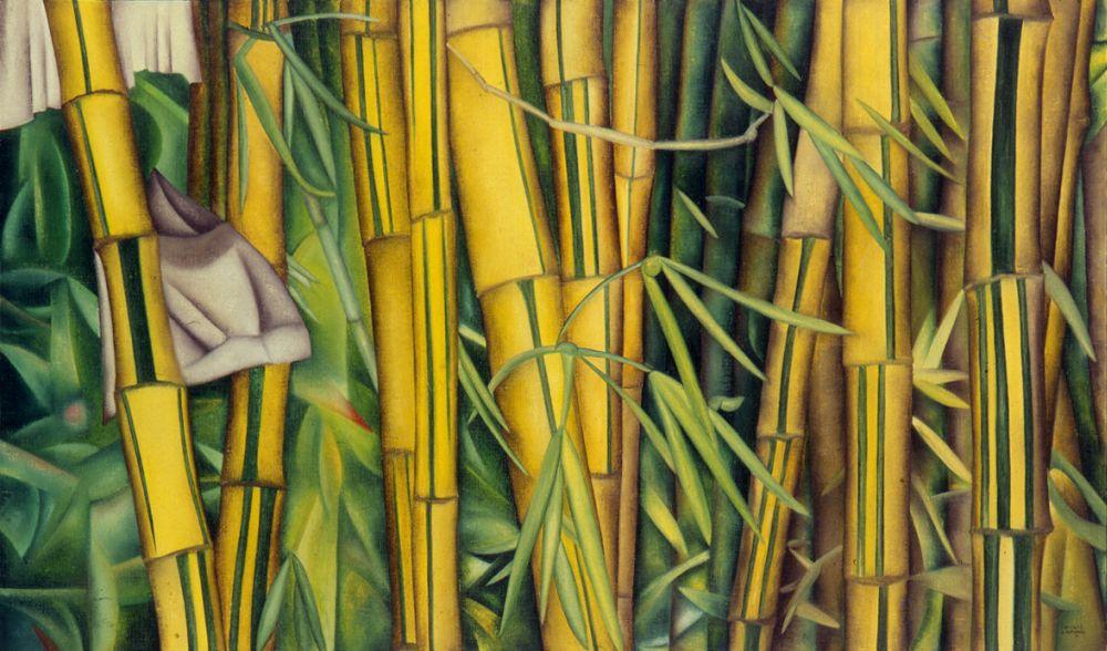 Bambuzal | Bamboo Grove