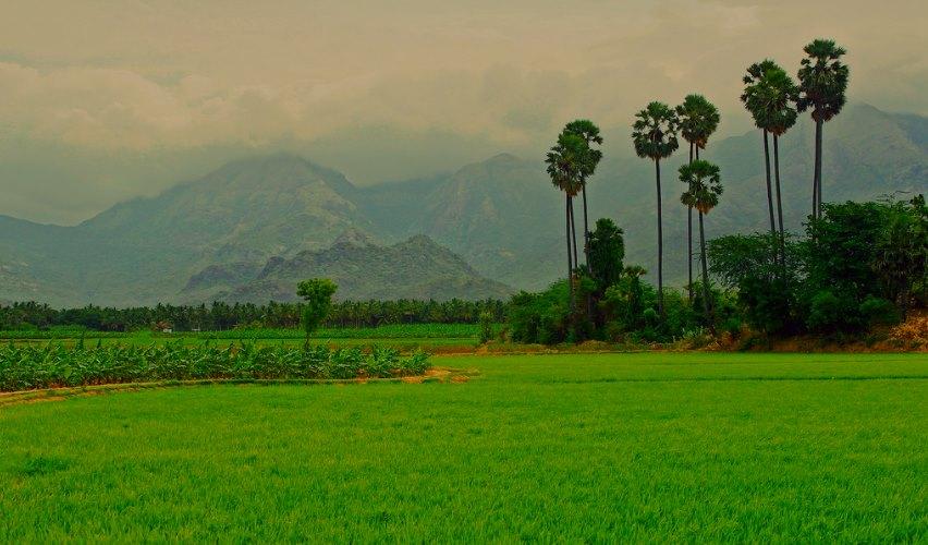 Ambasamudram, Tamil Nadu