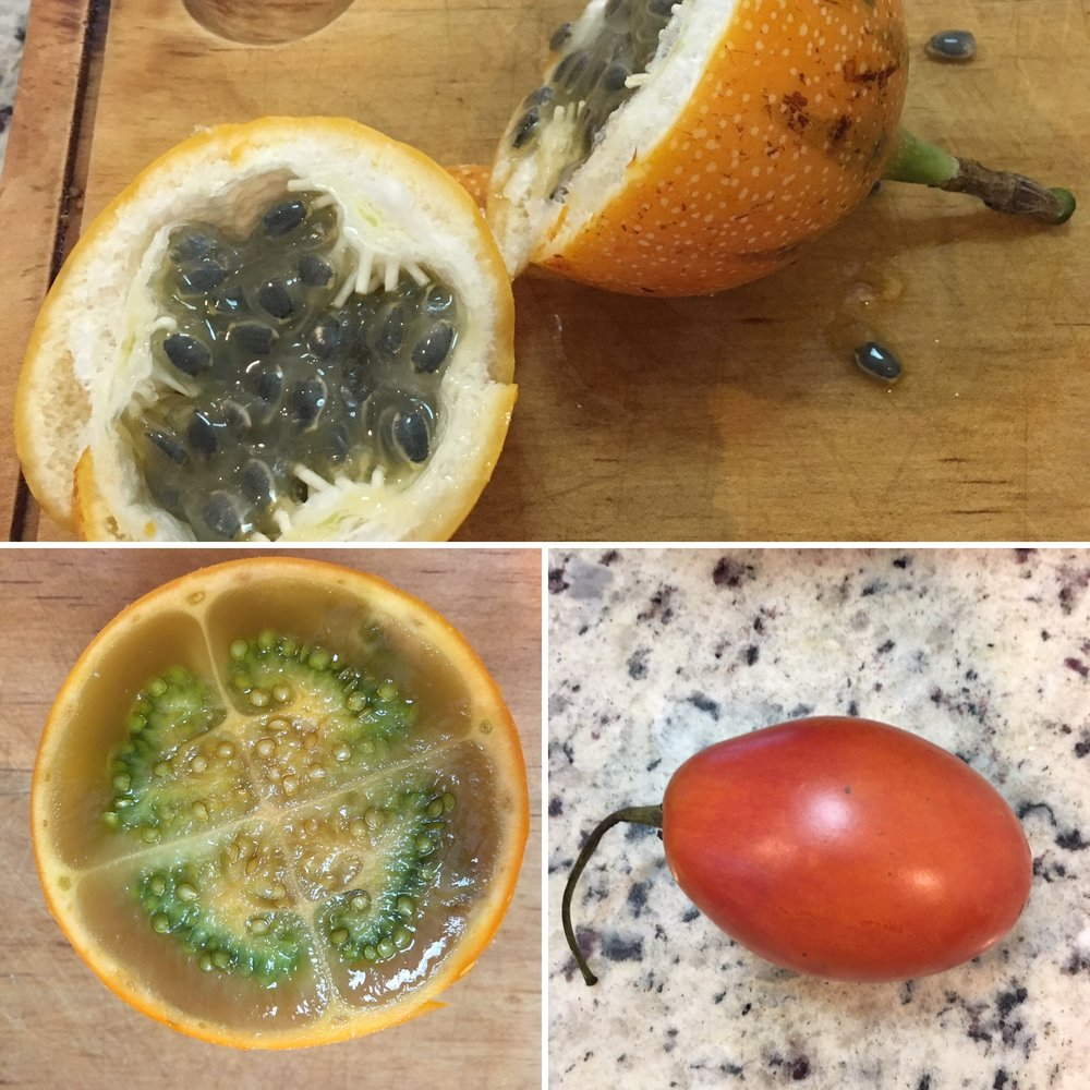 Top: granadilla - Bottom left: lulo - Bottom right: tomate de árbol