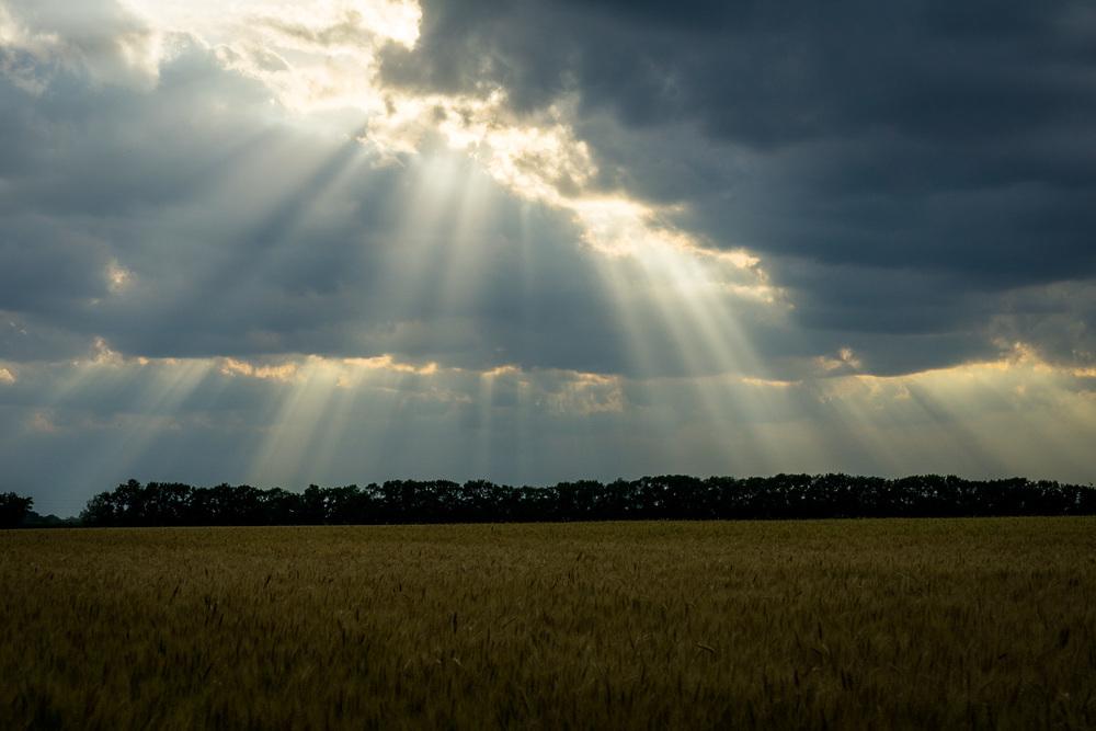Evening sunbeams near Newton, Kansas