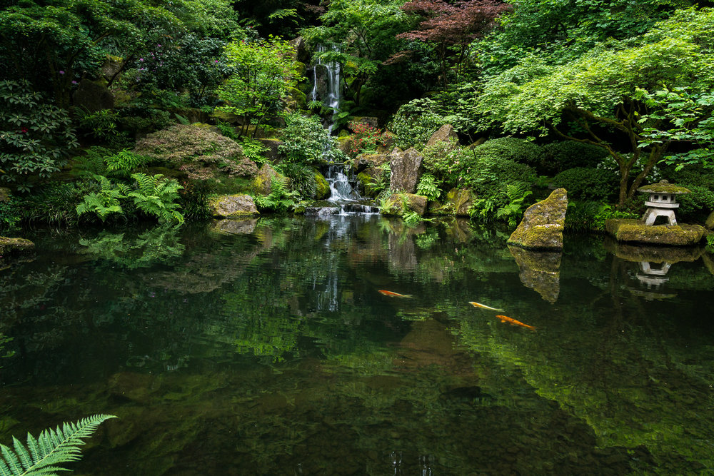 Garden Reflection at Portland's Japanese Garden