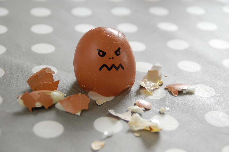 egg-100808_960_720.jpg