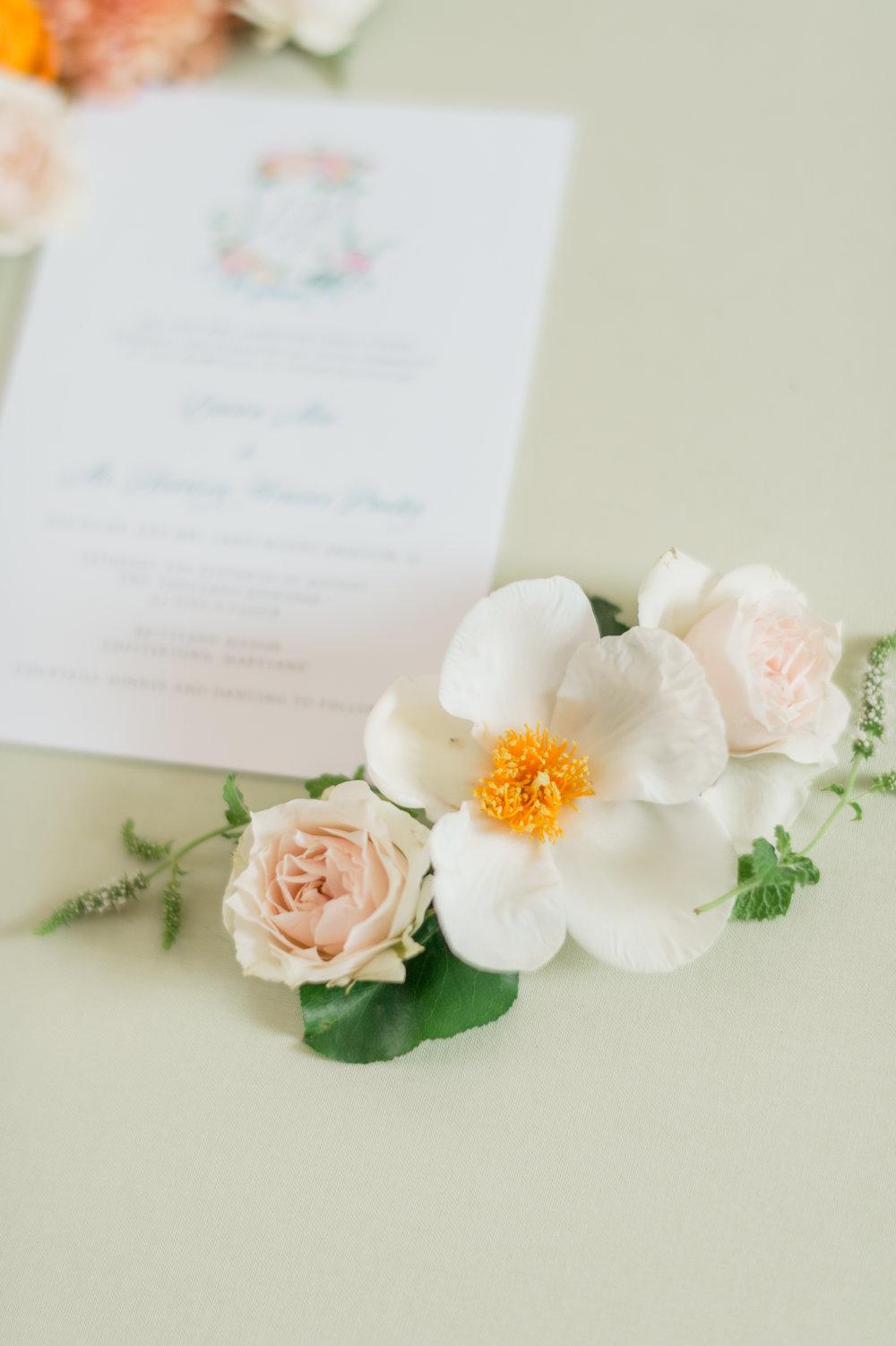 Harrison_Lauren_wedding_photo-238.jpg