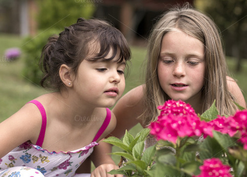 Two girls looking into a flower bush.