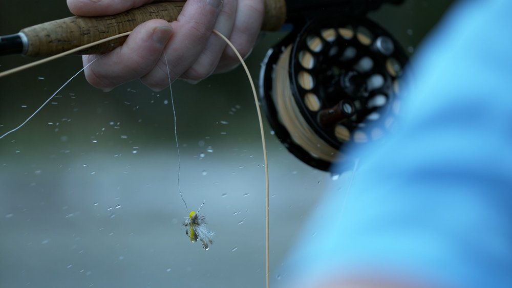 Fly Fishing Poster_1.1.3.png