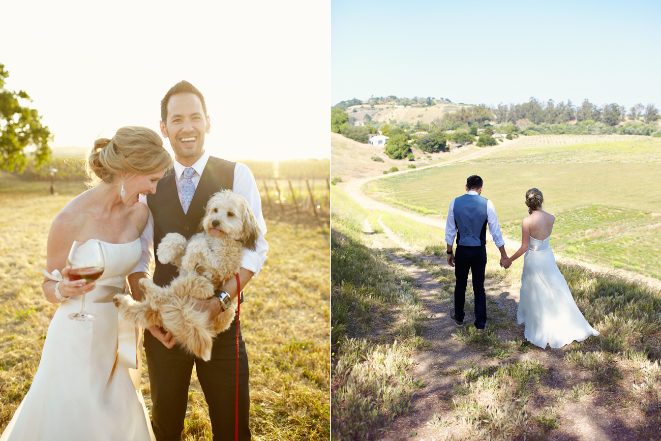 Wine and puppy in vineyard with bride and groom
